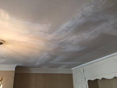 peinture naturelle mur natura