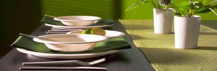 produits vaisselle écologique